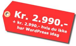Nettbutikk pris